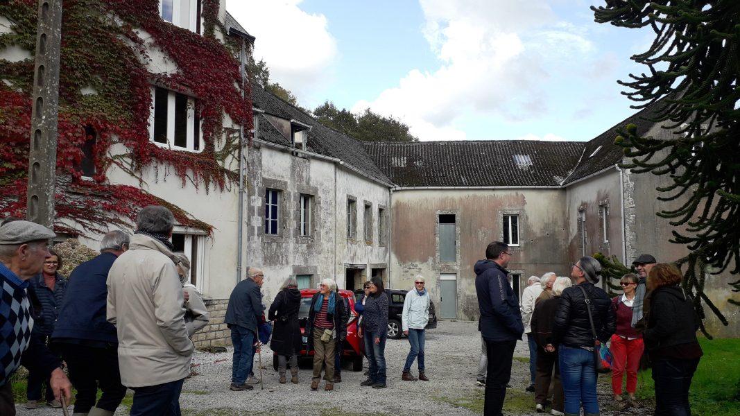 Goéland-Masqué-bretonnants-20-10-2019_001