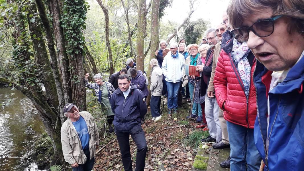 Goéland-Masqué-bretonnants-20-10-2019_004